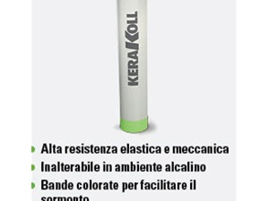 RINFORZO V50